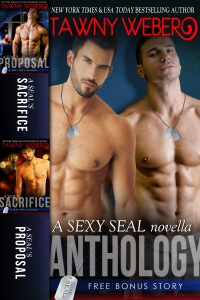 SexySEAL novella antho 2d cover
