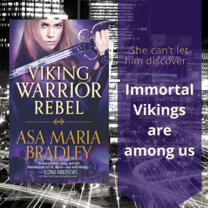 viking-warrior-rebel-graphic-2